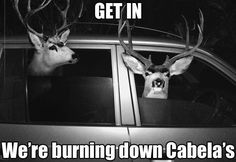Hunting Season Humor! Deer ready to burn down Cabela's. LOL