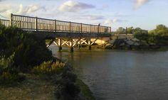 Puente. Los Toruños