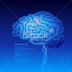 Brain Royalty Free Stock Vector Art Illustration