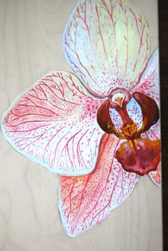 A Shy Orchid  Original Oil Painting by WoodPigeon on Etsy, $100.00