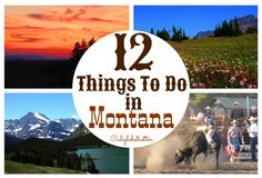 Montana, USA - California Globetrotter
