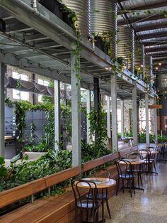 Fytogreen Australia | LinkedIn Planter Boxes, Planters, Australia, Window Boxes, Plant, Flower Pots, Flower Planters, Planter Garden, Pots