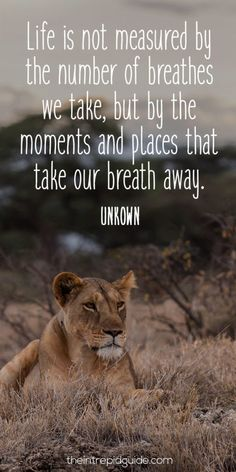travelquote-life-is-not-measured-by-the-number-of-breathes-we-take-but-by-the-moments-and-places-that-take-our-breath-away