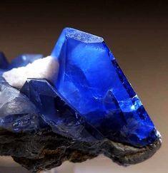 Benitoite from Gem Mine, San Benito Co. Benitoite (ben-EE-toe-ite) is a rare blue barium titanium silicate mineral, found in hydrothermally altered serpentinite. Cool Rocks, Beautiful Rocks, Minerals And Gemstones, Rocks And Minerals, Silicate Minerals, Mineral Stone, Rocks And Gems, Healing Stones, Lapis Lazuli