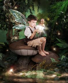 High End Magical Portraiture Experiences for Children. Enchanted Fairies creates family history by bringing your child's imagination to life. Fairy Photography, Children Photography, Fairy Photoshoot, Male Fairy, Enchanted Fairies, Unicorn Photos, Fairies Photos, Kobold, Fairy Pictures