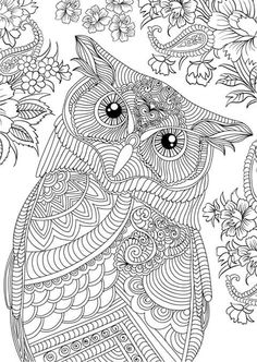 Free Printable Coloring Pages Owl Book Art Doodle Mandala Sheets Pictures