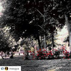 #Torino raccontata da masgya. Nell'attesa