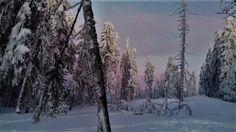 Partia Piatra graitoare, Arieseni. #arieseni #winter #snowboarding #sunset #december #romania Snowboarding, Romania, December, Sunset, Winter, Pictures, Outdoor, Snow Board, Winter Time