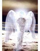 Anges et Maîtres Ascensionnés Actuellement il y a sept puissants Archanges qui nous irradient particulièrement de lumière et qui nous aident tous sur Terre.