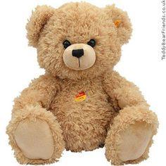 Soft & Cuddly Teddy Bear