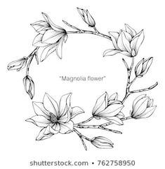 Illustration about Magnolia flower drawing illustration. Black and white with line art on white backgrounds. Illustration of card, hand, doodle - 110941754 Flower Line Drawings, Flower Drawing Tutorials, Botanical Line Drawing, Floral Drawing, Flower Sketches, Drawing Sketches, Drawing Flowers, Lilly Flower Drawing, Botanical Illustration Black And White