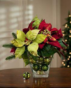 Decora esta Navidad con Noche buenas!!!