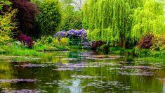Bing Image Archive: Claude Monet-Garten in Giverny, Département Eure, Region Haute-Normandie, Frankreich (© Oleg Bakhirev/Shutterstock)(Bing Germany)