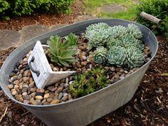 Gartendeko - Hauswurz in Blechwanne // succulent garden idea