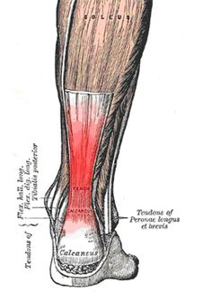 The Ultimate Runner's Guide to Achilles Tendon Injuries: The Scientific Signs, Symptoms, and Research Backed Treatment Options for Achilles Tendonitis and Insertional Achilles Tendinopathy - FROM RUNNERSCONNECT.NET