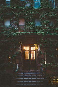 Door , outdoor , indoor, porte , estate, immeuble, building, garden