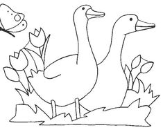 white_geese Adult coloring pages