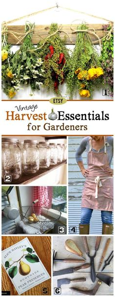 Here's a collection of beautiful and useful supplies from favourite Etsy sellers for harvesting your fall garden. Top picks include mason jars (of course), harvest baskets, gathering apron, herb drying rack, garden tools, and a potato and onion storage bin.