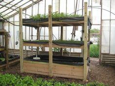 L'acquaponica coniuga insieme l'acquacoltura (allevamento di pesci e crostacei) con la coltivazione idroponica (coltivazione senza utilizzo di terra).