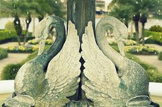 http://fineartamerica.com/featured/stone-swans-in-the-rain-laurie-perry.html
