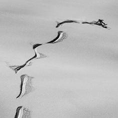 Antti Autti - powder wheelie fun  #snowboarding #winter