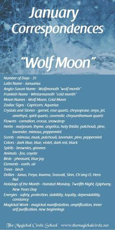 Moon Zodiac, Zodiac Signs Capricorn, Full Moon Names, Cold Moon, Eclectic Witch, Baby Witch, Pagan Witch, Spirit Quartz, Moon Magic