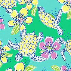 new lilly turtles