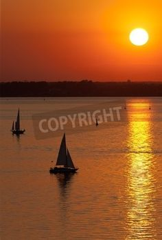 Silhouettes of sailing vessels in the sea at sunset mural