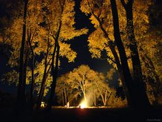 Head up the canyon, light up a bonfire and cook a big old dutch oven followed by lots of s'mores. Description from rolleduppretty.com. I searched for this on bing.com/images