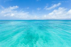 Clear blue tropical water of Aragusuku Island, Japan by Ippei & Janine