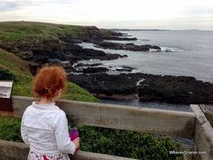 views at Nobbies Centre at phillip island nature parks Travel With Kids, Family Travel, Stuff To Do, Things To Do, Phillips Island, Parks, Centre, Wildlife, Beach