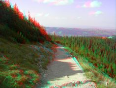 anaglyph nature - Google Search