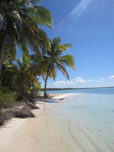 Punta Cana, Dominican Republic - > The beaches in Punta Cana are amazing! Lined with luscious palm trees, it really is a true beach escape destination.
