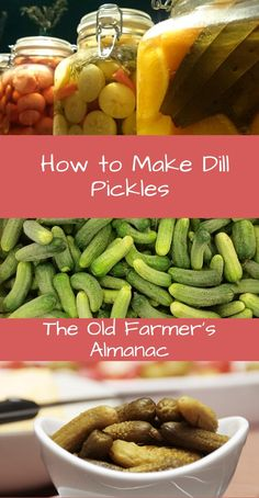 Learn how to make dill pickles at home with The Old Farmers Almanac! Old Fashioned Dill Pickle Recipe, Quick Pickle Recipe, Canning Dill Pickles, High Acid Foods, How To Make Pickles, Farmers Almanac, Thing 1, Old Recipes, Pickling