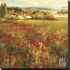 Fiori Piccoli Stretched Canvas Print by K. Solaman at Art.com
