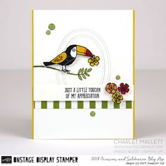 Bird Banter Birthday card- Charlet Mallett - Stampin' Up! Occasions 2018 Hello again! Happy Turkey day if you are feasting in the USA. Today I have two more cards to share using Bird Banter. Happy Turkey Day, Making Greeting Cards, Stamping Up Cards, Bird Cards, Animal Cards, Thing 1, Making Ideas, Thank You Cards, Cardmaking