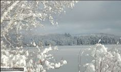 snow for daysssss! love this!#CDNGetaway.