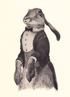 vintage rabbit...