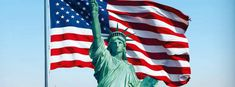 Everyone is loving the PTBA® Blog. Investors, Blog, Website, American, Blogging