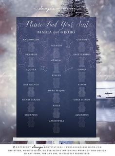 Starry Night Wedding Seating Chart, Galaxy Wedding Seating Chart, Constellation Wedding Seating Chart, Celestial Wedding Seating Chart Poster, Night Sky Wedding Seating Plan, Astronomy Wedding Seating Plan, Space Cosmos Wedding Seating Chart by Soumya's Invitations