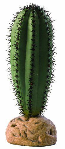 Exo Terra Saguaro Cactus Terrarium Plant Exo Terra http://www.amazon.com/dp/B001B5E9WS/ref=cm_sw_r_pi_dp_xgOtvb1HV2WR7