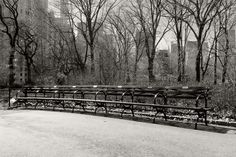 https://flic.kr/p/LGNPqD | The Bench / Лавка | Manhattan Series, New York, March…