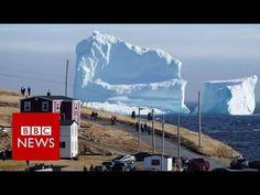Huge iceberg looms over Canada's Newfoundland coast - BBC News