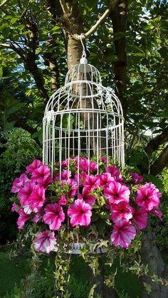 Gartenblumen - Garten Design - Garden Care, Garden Design and Gardening Supplies Garden Planters, Flower Pots, Garden Art, Flowers, Flower Garden Design, Garden Decor, Garden Design, Garden Containers, Plants