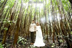 Pre wedding in forest