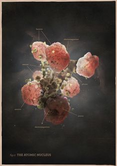 Scientific illustrations and visualisations on Behance
