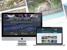 Cornice Environmental Consulting - Web Design & Development / Responsive Web Design Environmental Challenges, Manners, Web Design, Website Designs, Site Design, Behavior