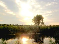 Sunset at Quanicassee Wildlife Area just outside of Bay City, Essexville, Michigan