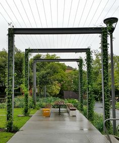 12 Pergola Patio Ideas that are perfect for garden lovers! Wire Trellis, Grape Trellis, Grape Arbor, Hops Trellis, Metal Pergola, Outdoor Pergola, Rustic Pergola, Backyard Pergola, Pergola Shade