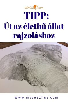 Tipp: Út az élethű állatrajzokhoz! :) Kattints! Art, Art Background, Kunst, Performing Arts, Art Education Resources, Artworks